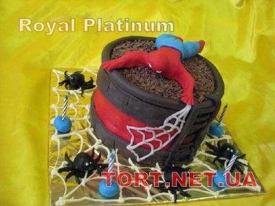 Торт Паук_2