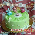 Торт Смешарики_18