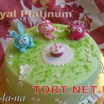 Торт Смешарики_19
