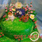 Торт Смешарики_6