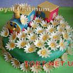 Торт Паровозик из Ромашково_9
