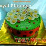 Торт для ребёнка_3