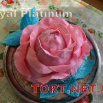 Торт с цветами_159
