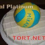 Торт Спорт_12