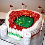 Торт Спорт_8