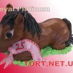 Торт Скачки_7