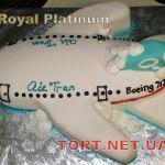 Торт Самолет_10