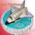Торт Самолет_11