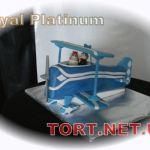 Торт Самолет_12