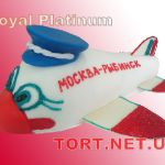 Торт Самолет_13