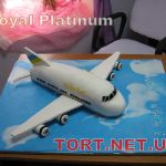 Торт Самолет_1