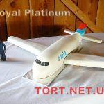 Торт Самолет_22