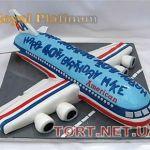 Торт Самолет_24