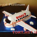 Торт Самолет_7