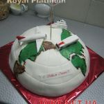 Торт Самолет_8