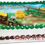 Торт Сервисное авто_19