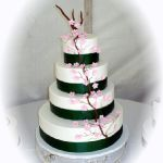 Торт Природоведение_19