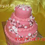 Торт Природоведение_24