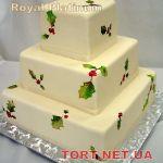 Торт Природоведение_2