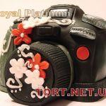 Торт Фотоаппарат_8