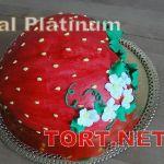 Торт Имитация пищи_5