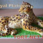 Торт на День рождения_4