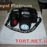 Торт на День рождения_7