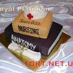 Торт на День знаний_14