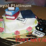 Торт на День знаний_17