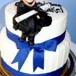 Торт на День студента_13