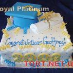 Торт на День студента_3