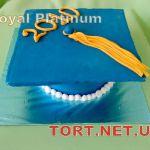 Торт на День студента_5