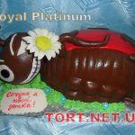 Торт с жуками_6