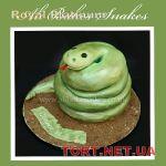 Торт Змея_12