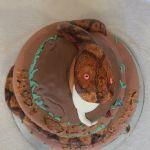 Торт Змея_2