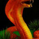 Торт Змея_5