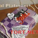 Торт Кот_17