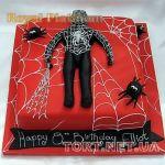 Торт Паук_3