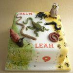 Торт Паук_6
