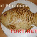 Торт Рыбка_4