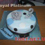 Торт Слон_23