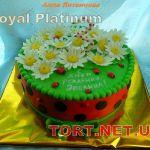 Торт Божья коровка_1