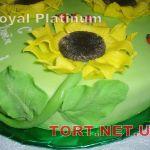 Торт Божья коровка_5