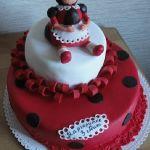 Торт Божья коровка_9