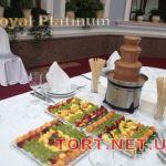 Шоколадный фонтан 50см_4