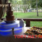 Шоколадный фонтан 85см_1