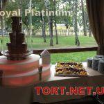 Шоколадный фонтан XXL PRO