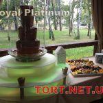 Шоколадный фонтан 85см_5